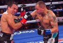 Marquez vs Alvarado fight video