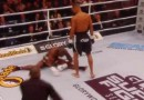 knockout spinning head kick