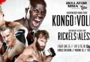 Cheick Kongo vs. Alexander Volkov