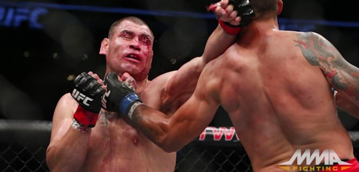 Fabricio Werdum vs Cain Velasquez fight