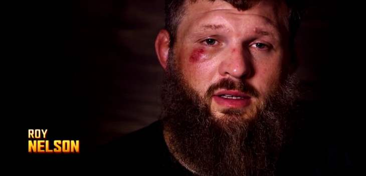 Roy Nelson 2015
