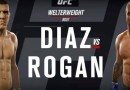 Nick Diaz vs Joe Rogan Fight